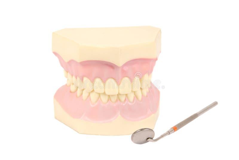 Cuidados dentários foto de stock royalty free