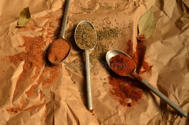 Cuillère d'étain avec la poudre de paprika, thym sec, noix de muscade image stock
