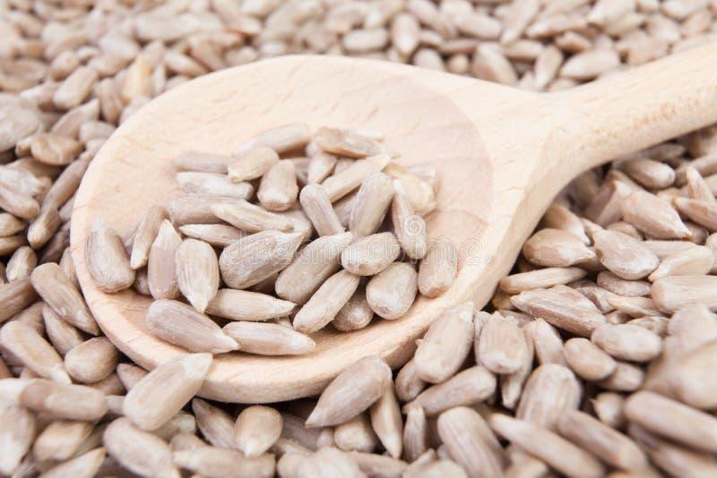 Cuillère de graines de tournesol images libres de droits