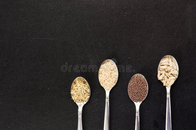 Cuillère des graines de moutarde de fenouil de sésame de tournesol pour la nourriture macrobiotique photos stock