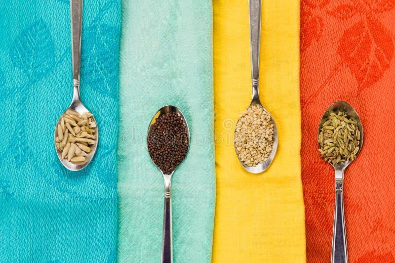 Cuillère des graines de moutarde de fenouil de sésame de tournesol pour la nourriture macrobiotique image libre de droits