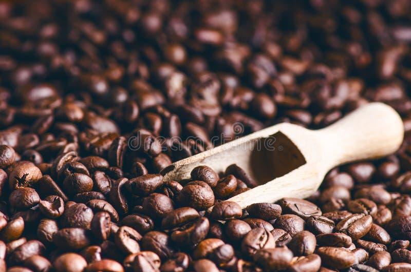 Cuillère des grains de café Fond Énergie Grains de café crus Produit granuleux Boisson chaude Fin vers le haut Moisson Fond natur photographie stock