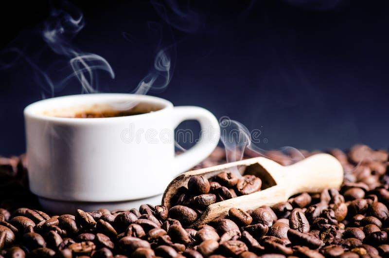 Cuillère des grains de café Fond Énergie Grains de café crus Produit granuleux Boisson chaude Fin vers le haut Moisson Fond natur images stock