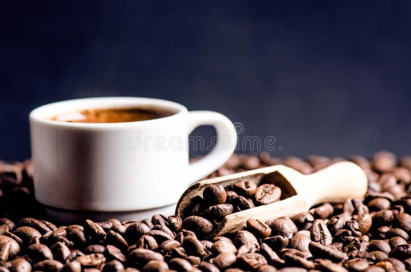 Cuillère des grains de café Fond Énergie Grains de café crus Produit granuleux Boisson chaude Fin vers le haut Moisson Fond natur photos stock