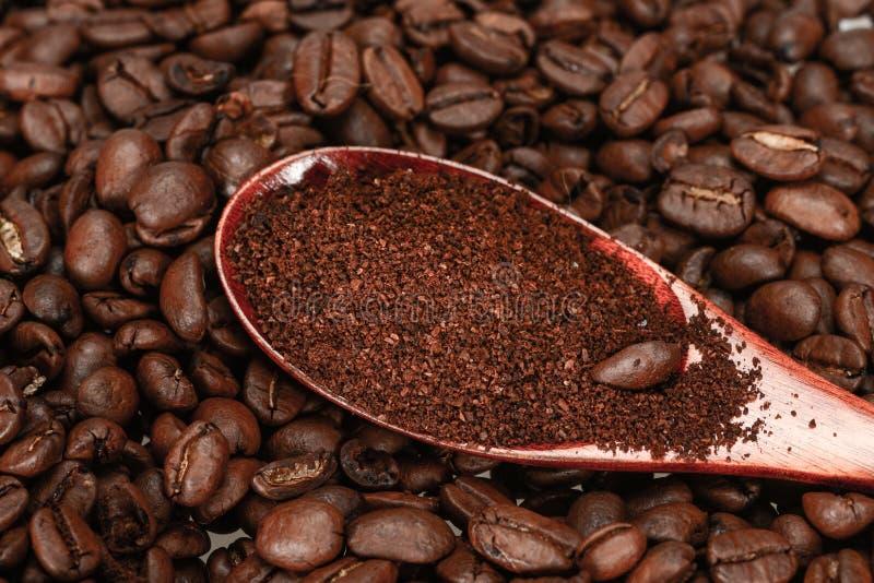 Cuillère en bambou rouge avec le cafè moulu, mensonges sur les grains de café rôtis, plan rapproché, d'isolement sur un fond blan photographie stock libre de droits