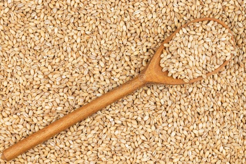 Download Cuillère En Bois Avec L'orge Perlée Photo stock - Image du céréale, sain: 56490780