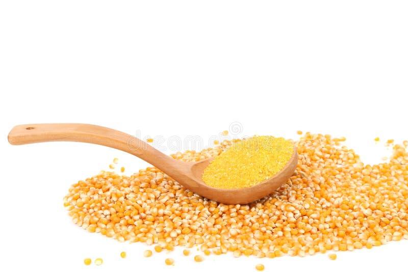 Cuillère en bois avec les grains et la farine de maïs. photographie stock