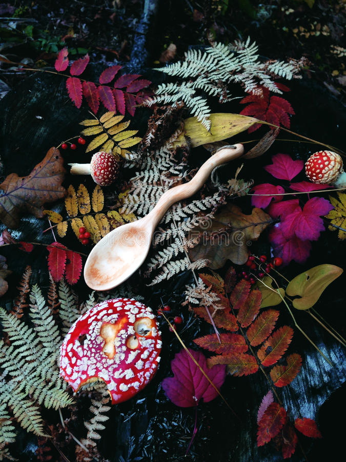 Cuillère en bois découpée en bois, boisage, couleurs d'automne photo stock