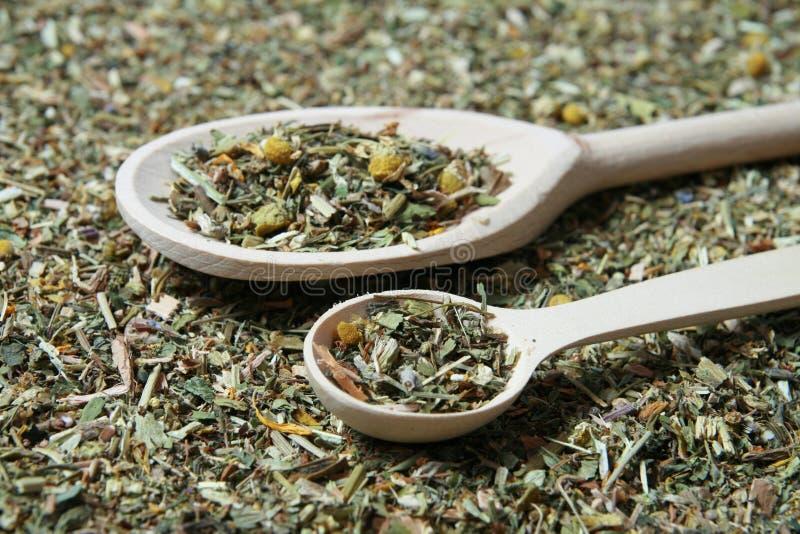 Cuillère en bois et diverses herbes dans un herbalist photo stock
