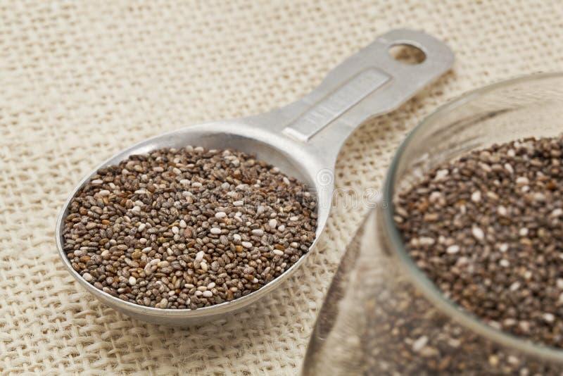 Cuiller à soupe de graines de chia images stock