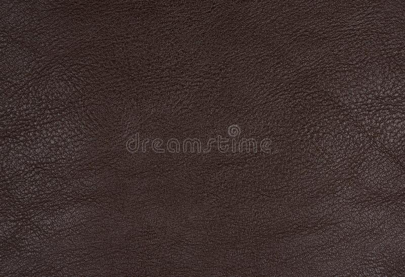 Cuir de Brown photos stock
