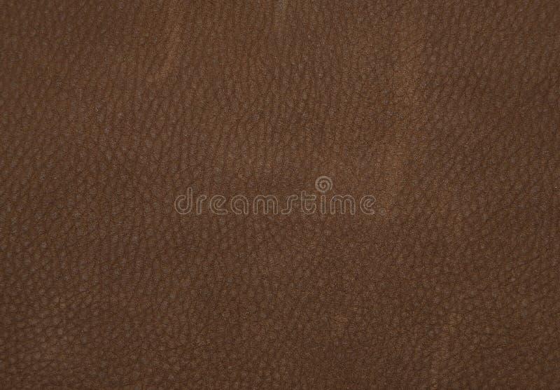 Cuir de Brown photo stock