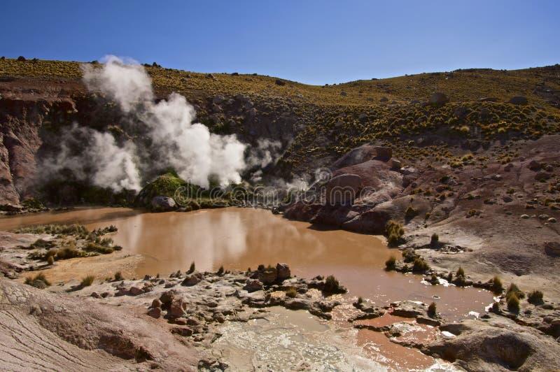 Cuisez la mise à l'air libre à la vapeur des piscines de boue dans le désert d'Atacama photo libre de droits