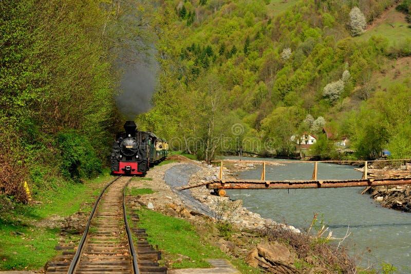 Cuisez Mocanita à la vapeur appelé par train en vallée de Vaser, Maramures, Roumanie au printemps temps photographie stock libre de droits