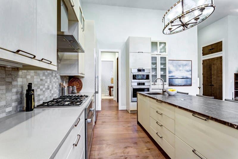Cuisine blanche contemporaine avec les appareils de cuisine à extrémité élevé photos stock