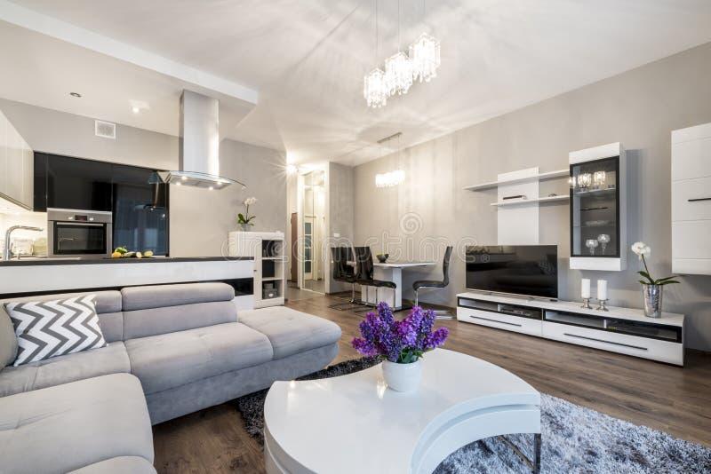 Cuisine et salon dans la maison de luxe photos libres de droits