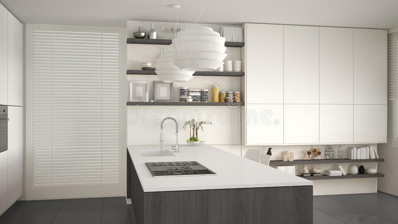 Cuisine grise et en bois moderne avec des étagères et des armoires, île avec la cuisinière à gaz et évier illustration libre de droits