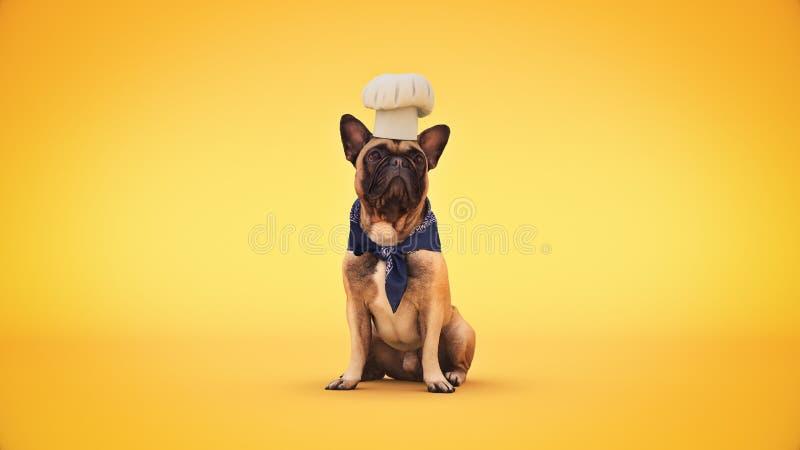 Cuisinier de chef de chien rendu 3d images stock