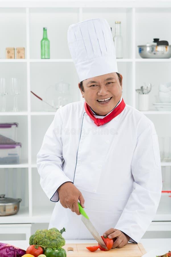 Cuisinier en chef gai images libres de droits