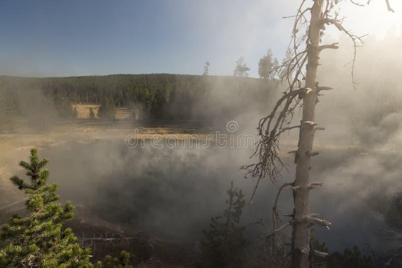 Cuisson à la vapeur de la source thermale, parc national de Yellowstone de pot de peinture de fontaine image stock