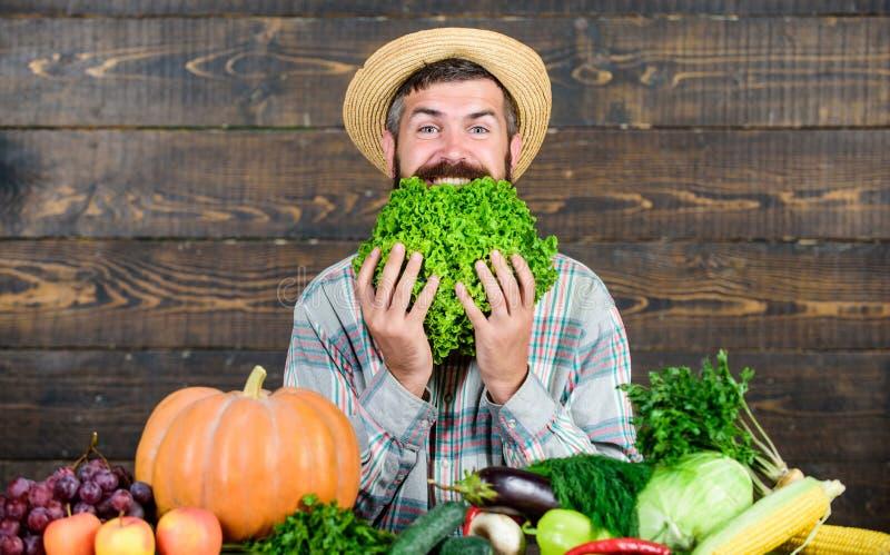 Cuisson avec passion nourriture saisonni?re de vitamine Fruits et l?gumes utiles agriculteur m?r barbu Festival de r?colte image libre de droits