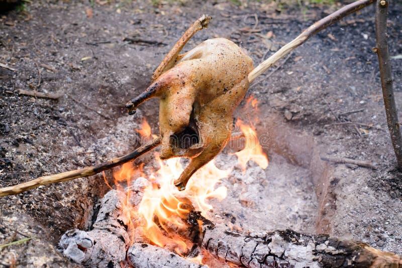 cuisson d 39 un poulet entier au dessus d 39 un feu de camp photo stock image du lifestyle barbecue. Black Bedroom Furniture Sets. Home Design Ideas