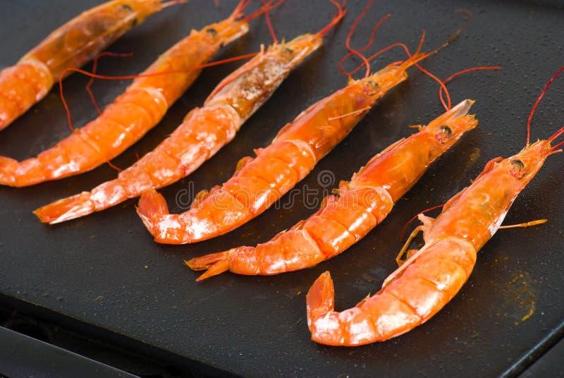 Cuisson des crevettes roses photos libres de droits