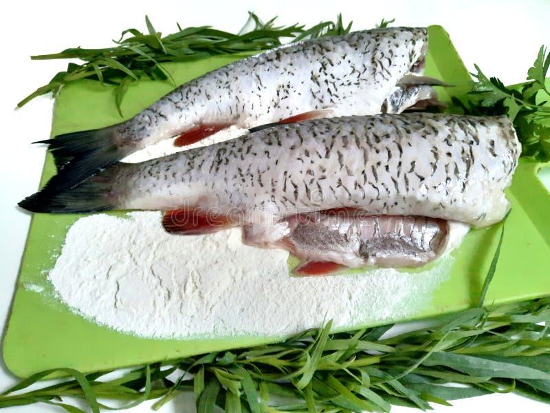 Cuisson des poissons, carcasses du poisson cru images libres de droits
