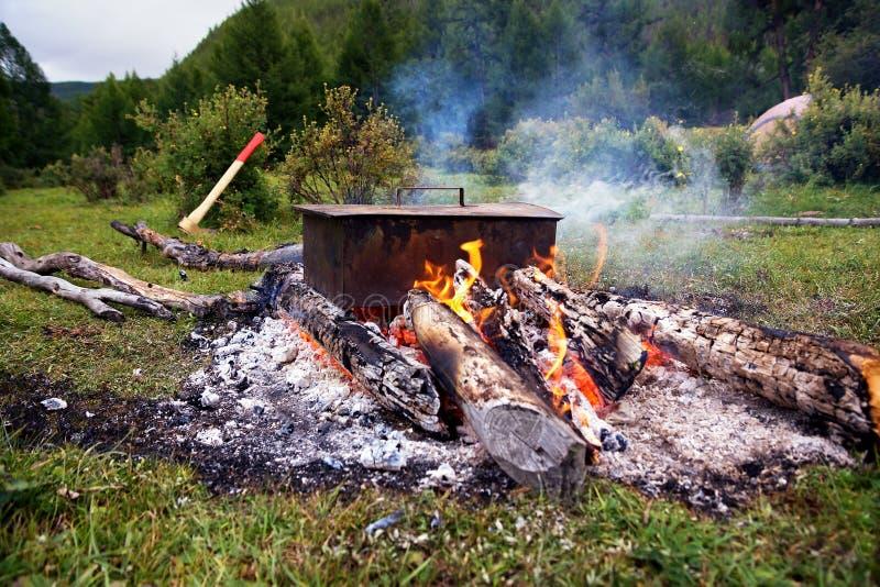 Cuisson des poissons sur un feu image libre de droits