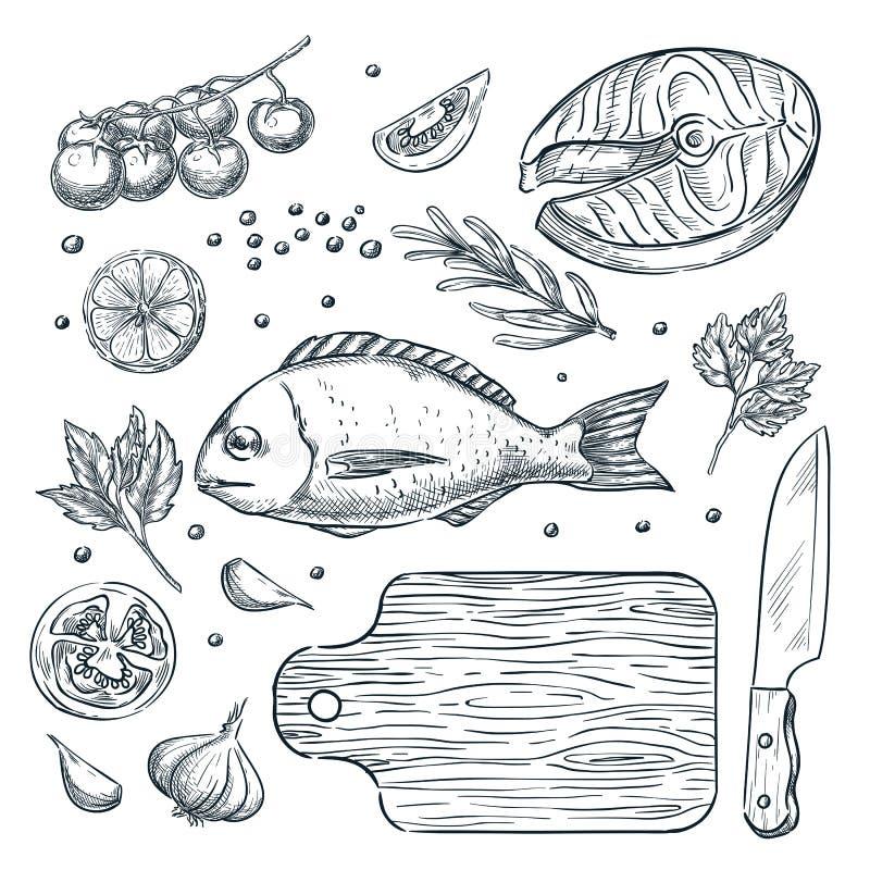 Cuisson du dorado de poissons et du bifteck saumoné, illustration de croquis Éléments de conception de menu de restaurant de frui illustration libre de droits