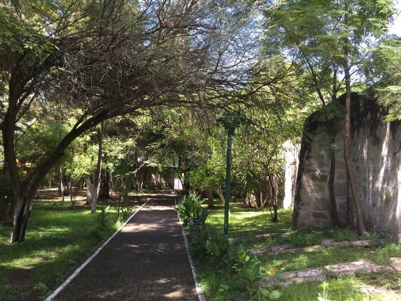 Cuitzeo的修士庭院 库存照片