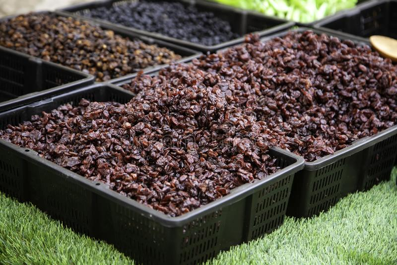 Cukierków wysuszeni winogrona zdjęcia stock