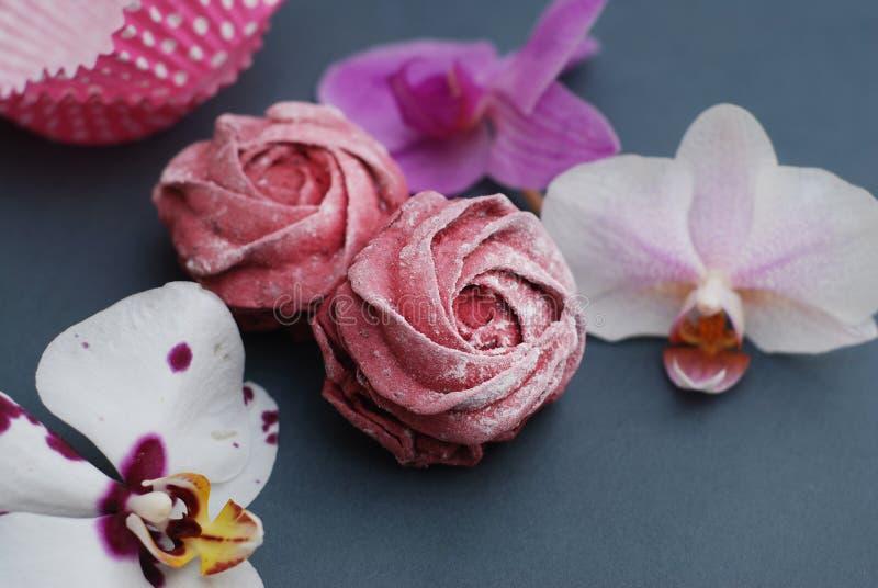 Cukierki Różowe bezy i Cuup kawa na Błękitnych szarość tle z Storczykowymi kwiatami Wiosny tło z kopii przestrzenią śniadanie zdjęcia royalty free
