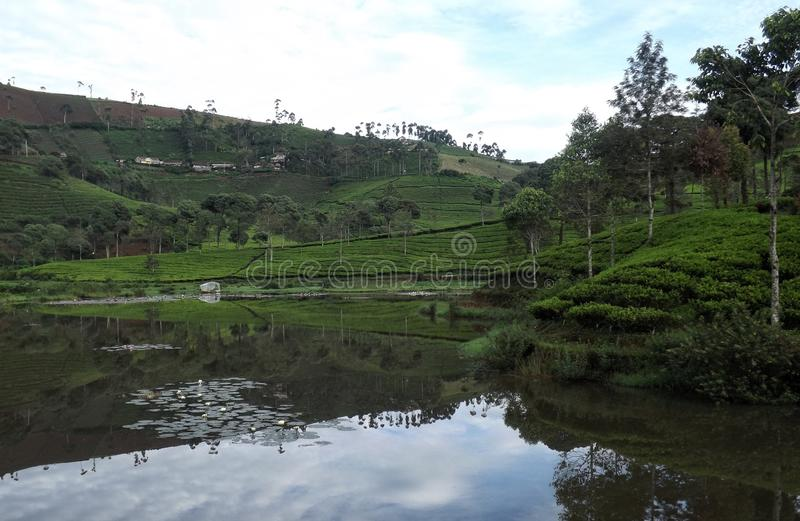 Cukul Lake stock images