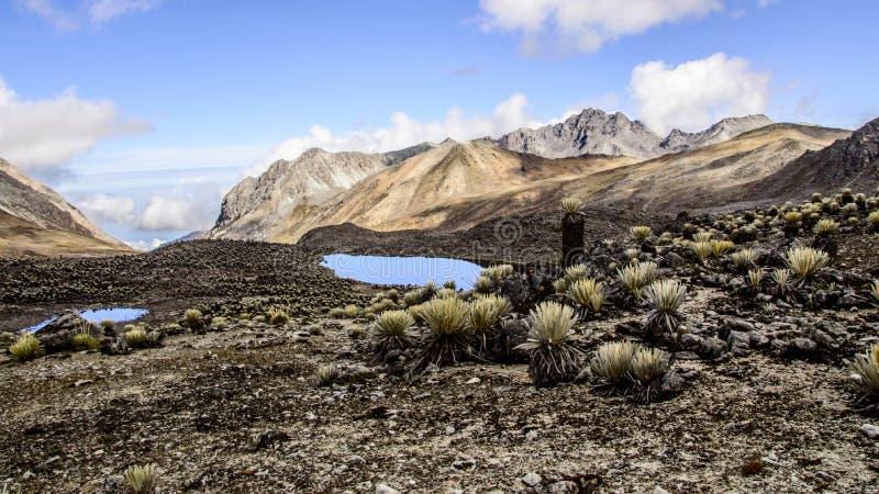 Culata 2. Piedras Blancas, the highest peak in La Culata National Park stock photography