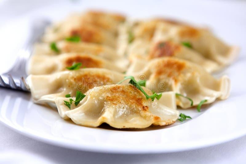 Culinária de Pierogi.Polish imagens de stock royalty free