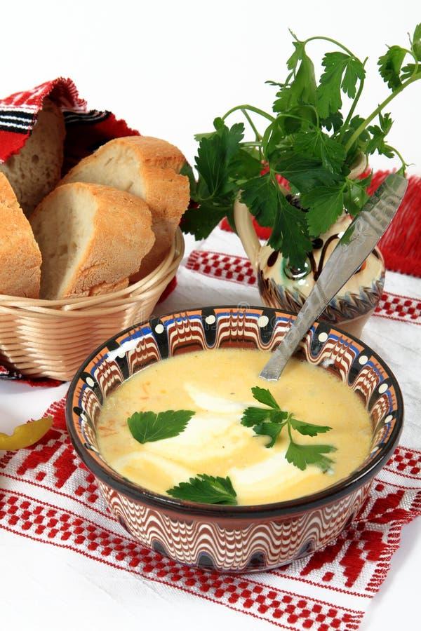 Culinária tradicional de Romania: sopa do tripe foto de stock