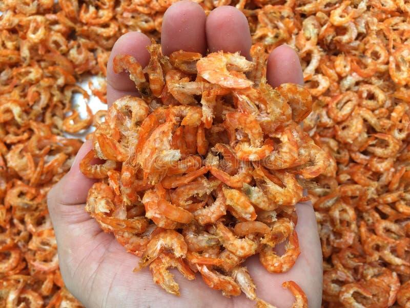 Culinária vietnamiana tradicional: camarão secado fotografia de stock