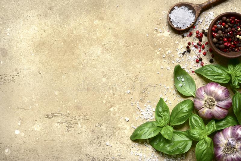 Culinary background with variety of spices : garlic, basil, pepper,salt. Top view with copy space royalty free stock image