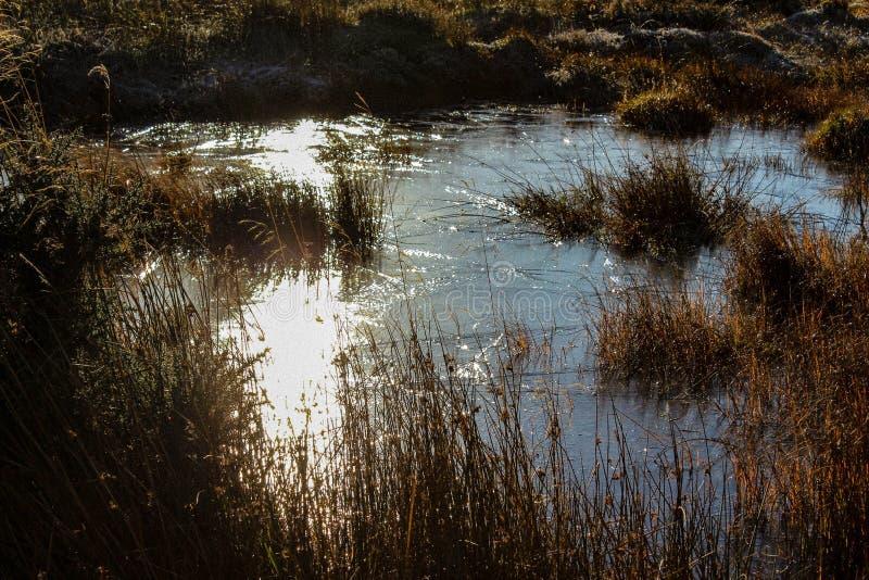 Culloden的冻池塘停泊 免版税库存图片