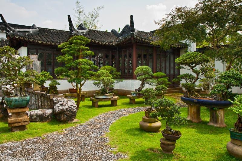 Cultiva un huerto un bonsai, Singapur foto de archivo