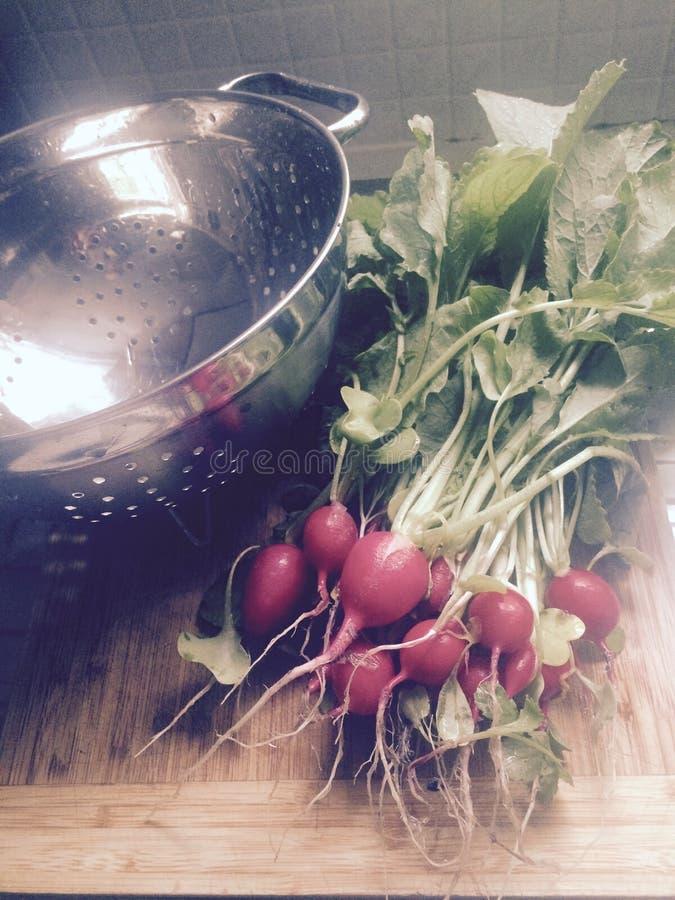 Cultivado em casa fotografia de stock royalty free