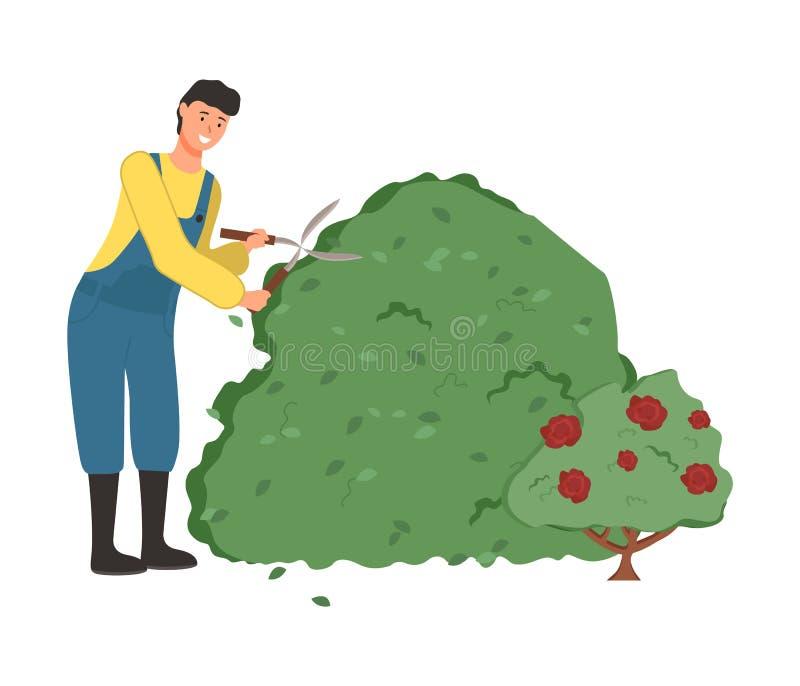 Cultivando a pessoa de jardinagem do homem que corta o vetor dos arbustos ilustração stock
