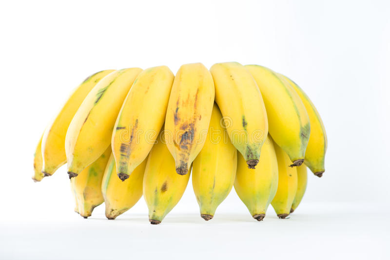 Cultivated banana. Closed up cultivated banana on white royalty free stock photo