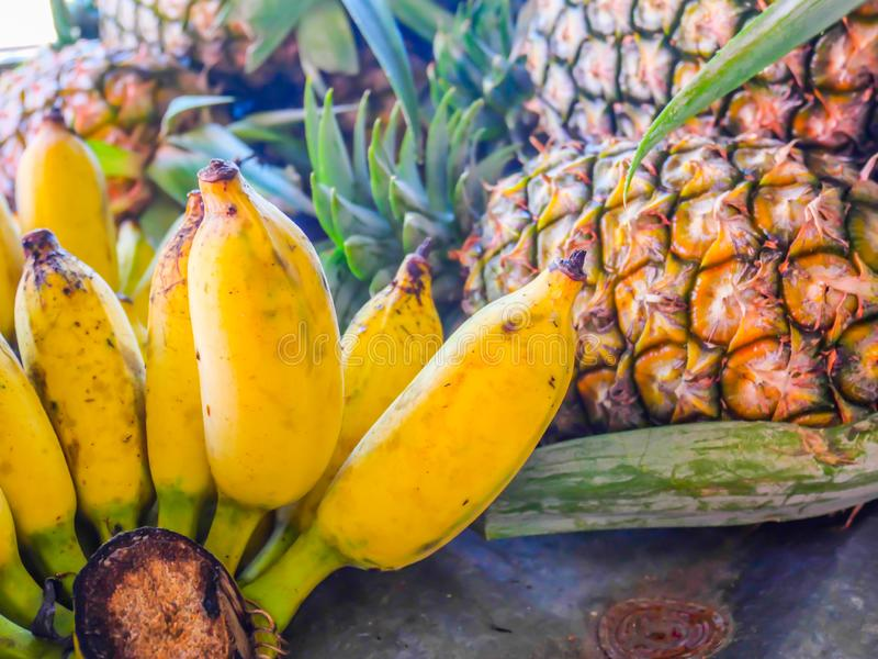 Cultivated banana ripe cultivated banana call Kluai Nam Wa in Thai and Pineapple fruit stock images