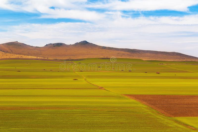 Cultivated fields at the beginning of spring. Arable land. View from top stock photography