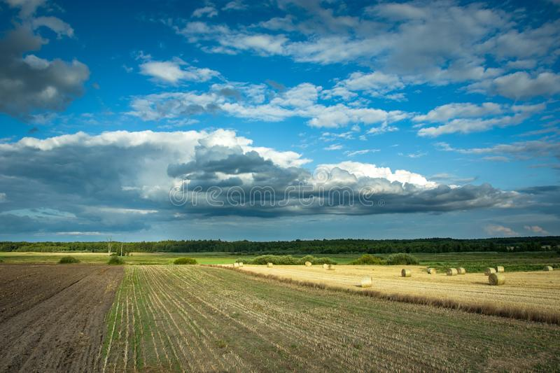 Cultivated fields in eastern Poland, horizon and clouds on the sky. Cultivated fields in eastern Poland, horizon and clouds on the blue sky royalty free stock photos
