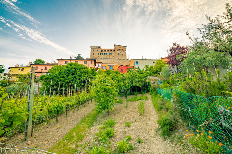Cultivated fields under the castle stock image