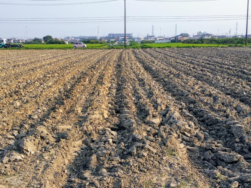 A Cultivated Land In The Process royalty free stock photography