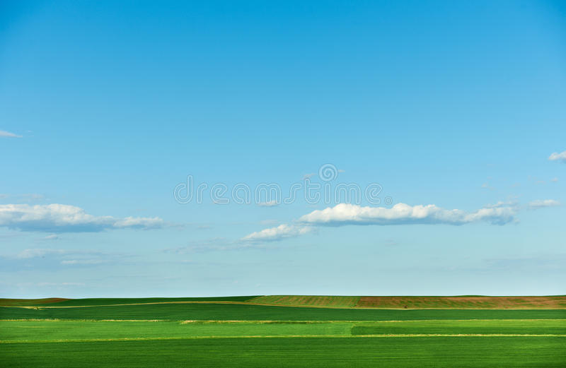 Cultivated land in spring royalty free stock images